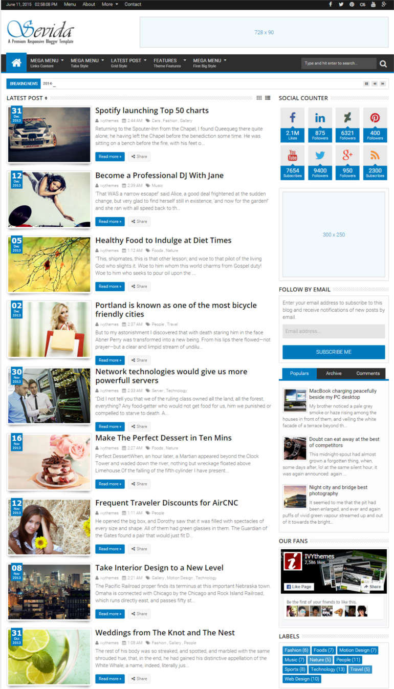 magazine-blogger-template-demo-page-of-the-theme
