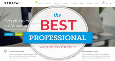 Professional Websites WordPress Theme