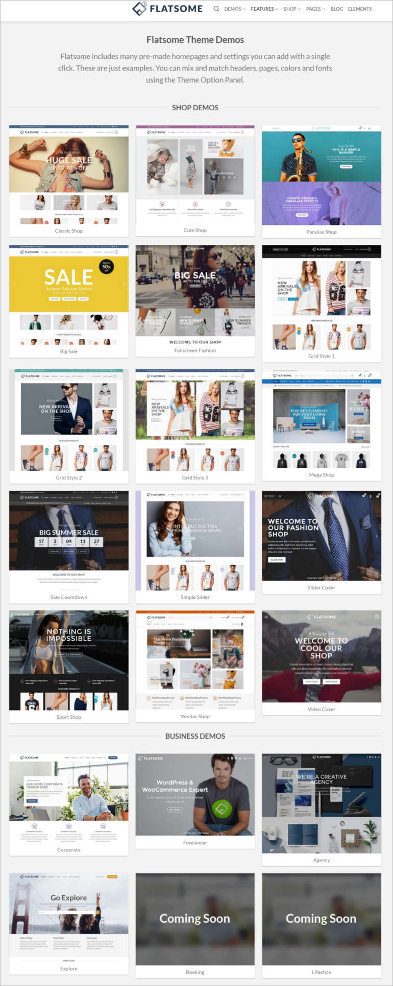 best-selling-wordpress-theme-inner-view