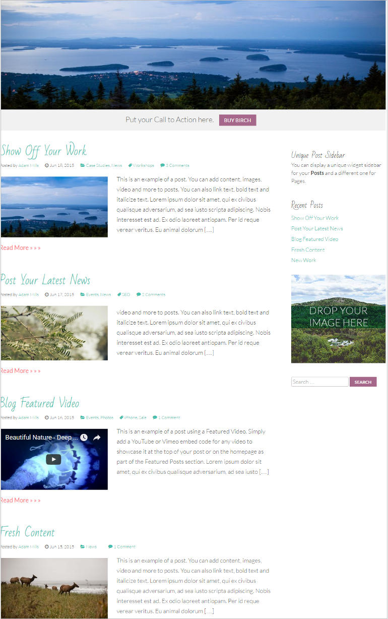 blog-page-of-birch-a-responsive-wordpress-theme