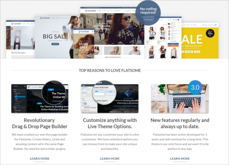 wordpress-theme-featuires
