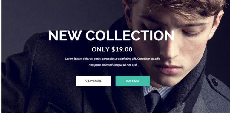 Gon is suitable for e-commerce websites
