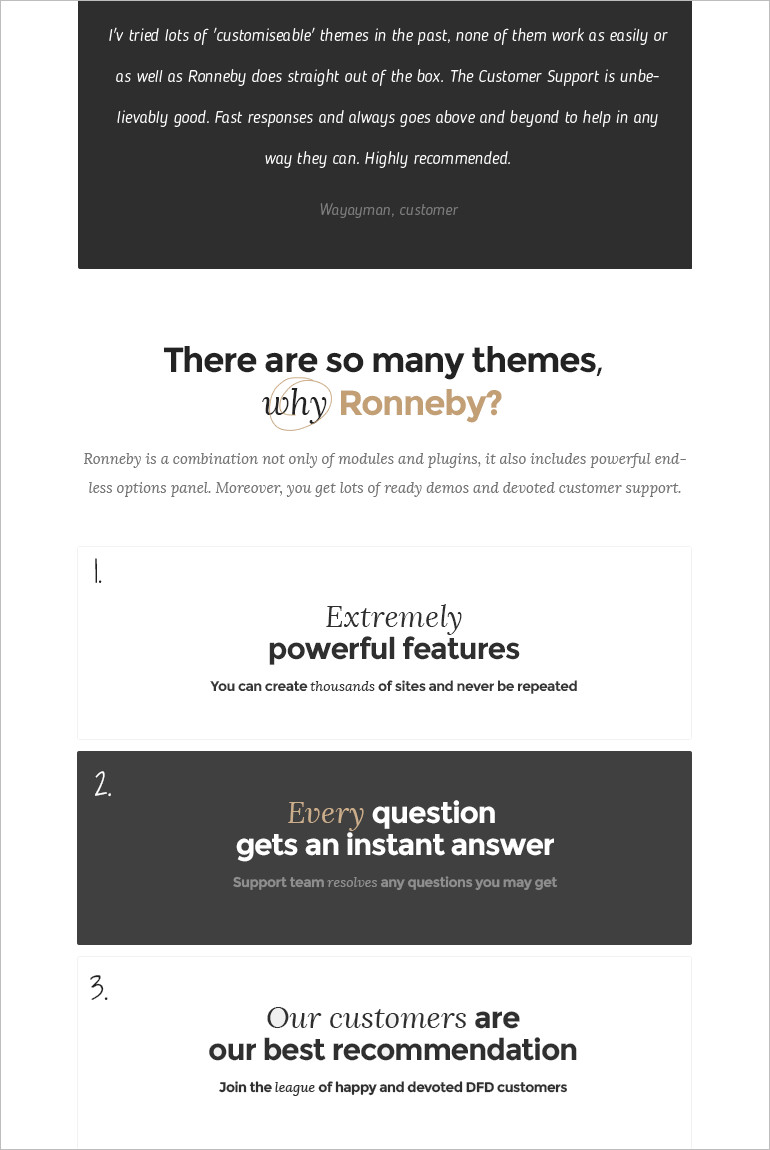 High-Performance WordPress Theme