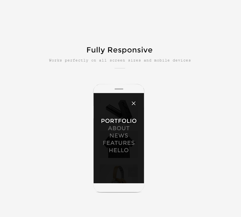 Portfolio wordpress theme and template