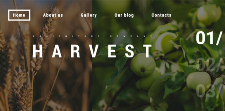 harvest-responsive-theme-for-multi-use