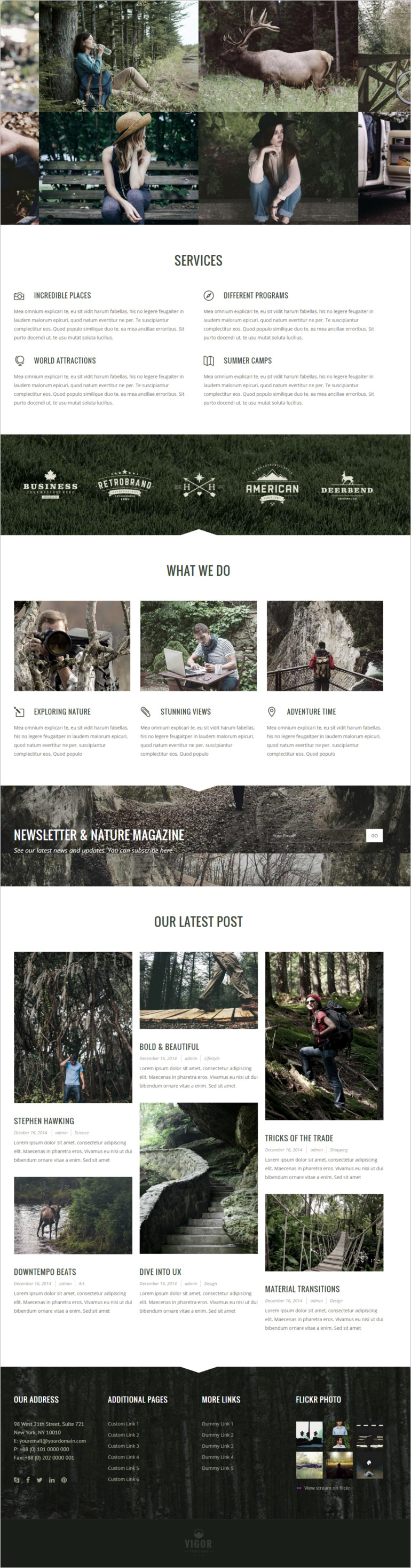 wordpress Vigor theme and template