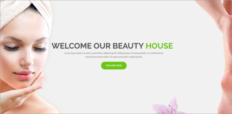 beauty website theme