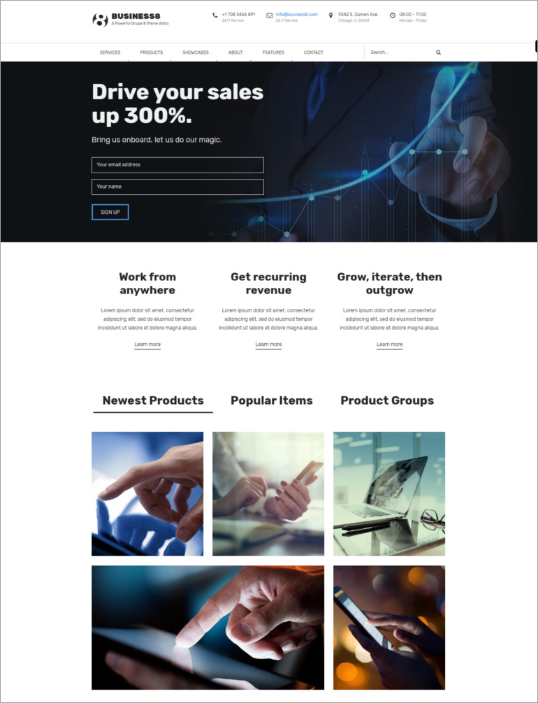 business theme drupal