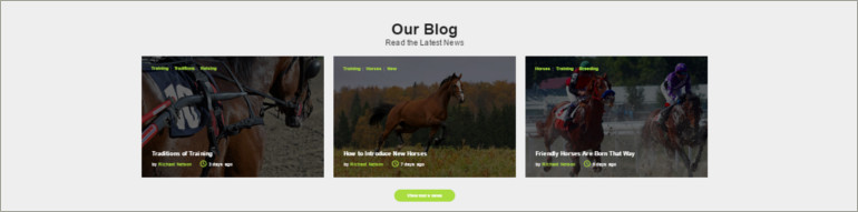 horse riding club blog