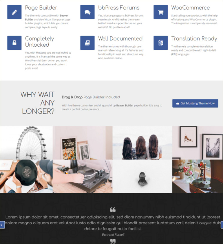 multipurpose website theme