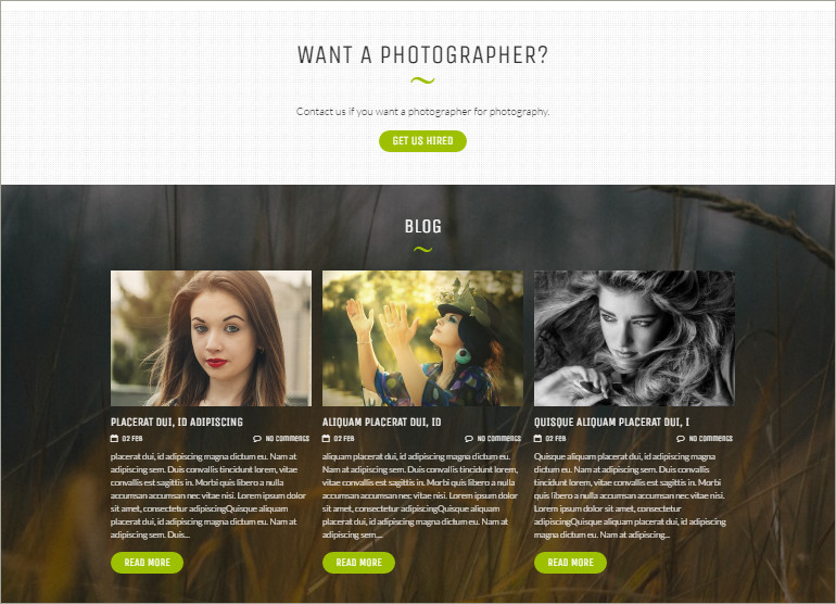 photography free theme