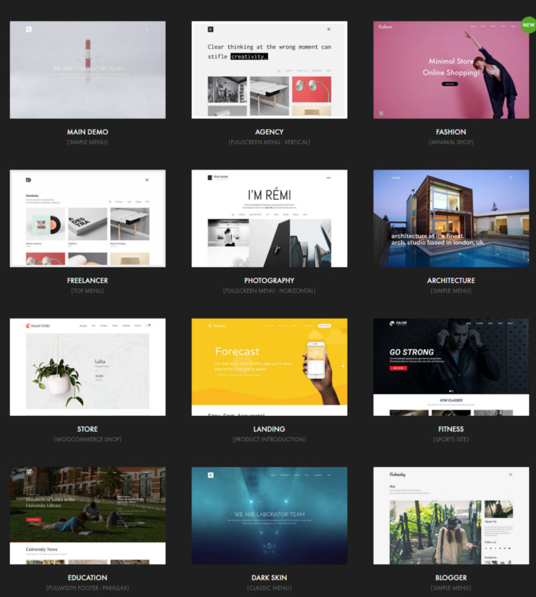 wp resume theme