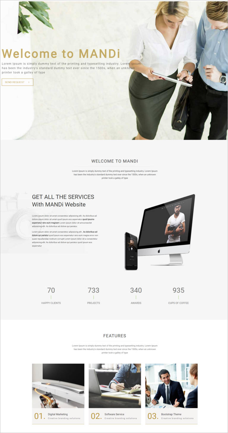 Onepage and Multipage Responsive Creative