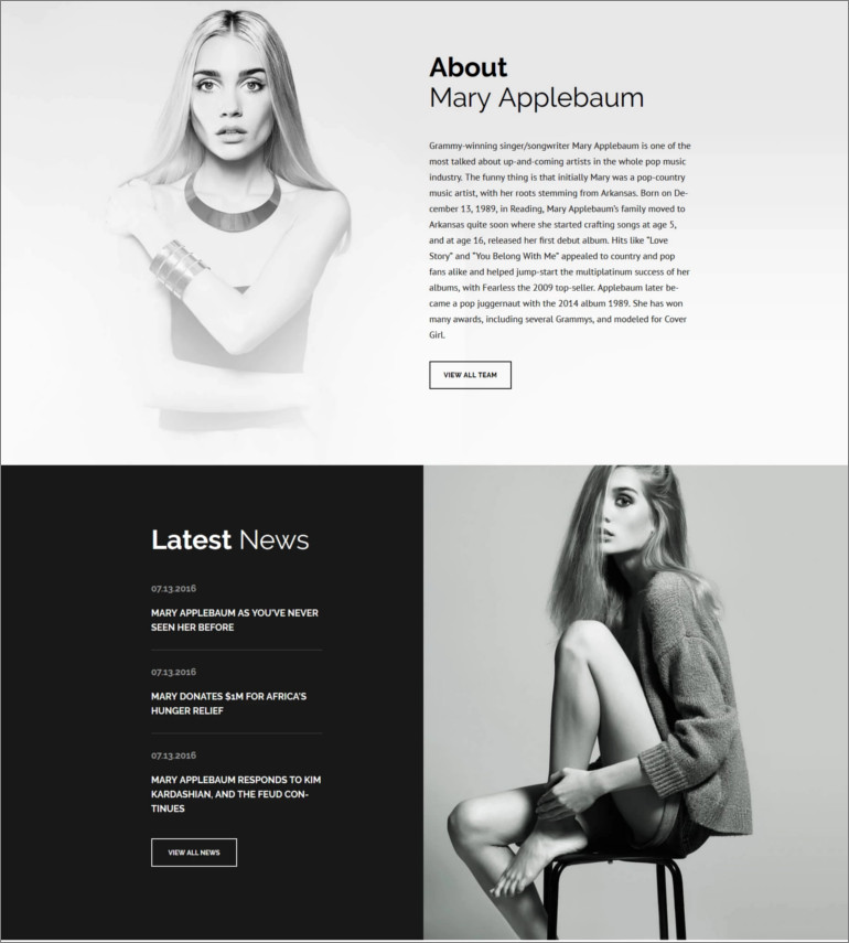 celebrity wordpress theme
