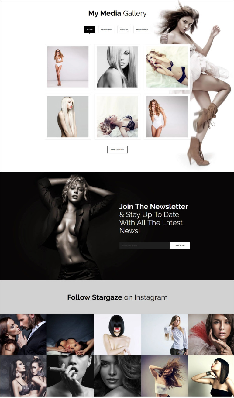 media gallery wordpress theme
