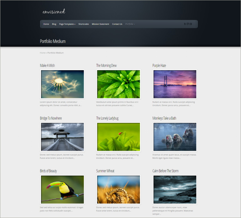 portfolio wordpress website theme