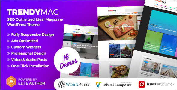 E-Newsletter WordPress Theme