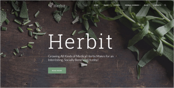 Medical Herbal WordPress Theme