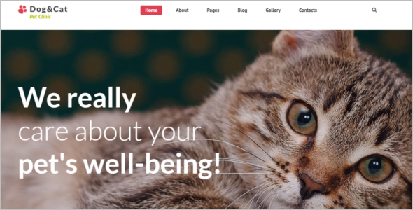 Pet Clinic Joomla Theme