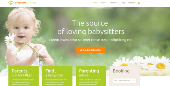 Baby Sitting WordPress Theme