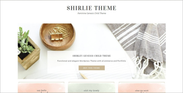 E-commerce Gallery WordPress Theme