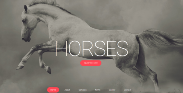 Effective Horse Club Website Template