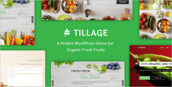 Food Selling WordPress Theme
