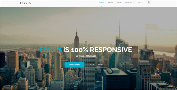 Fully Responsive E-Commerce HTML Website Template
