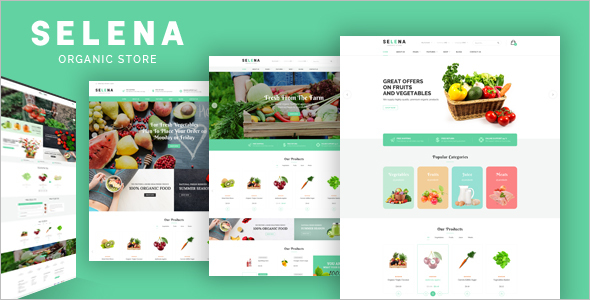 Magento Website Theme