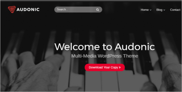 Multimedia Website Theme