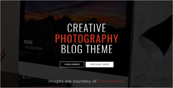 Photography WordPress Marketing Theme