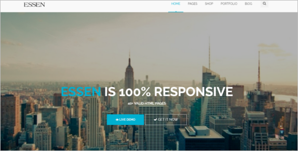 Premium Responsive Website Template