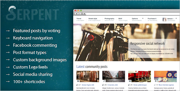 Premium Social Network WordPress Theme