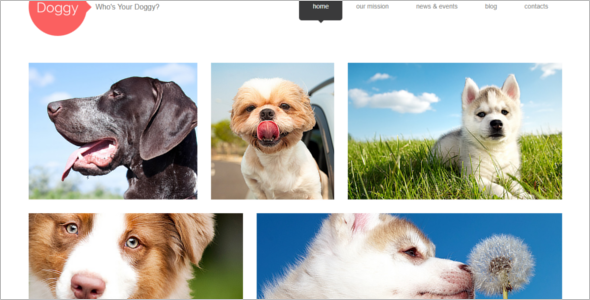 Responsive WordPress Pets Theme