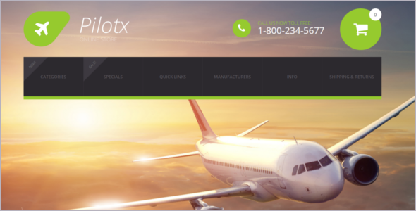 Airplane Business Theme