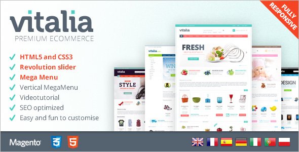 Customizable Premium Magento Theme