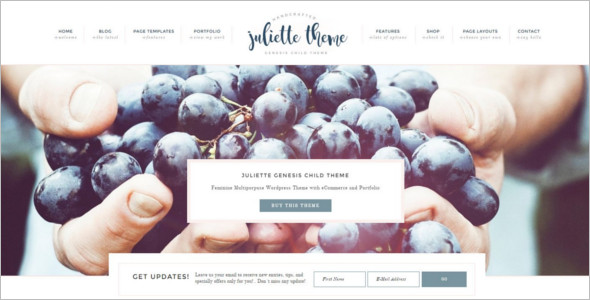 E-Commerce Website Theme Model