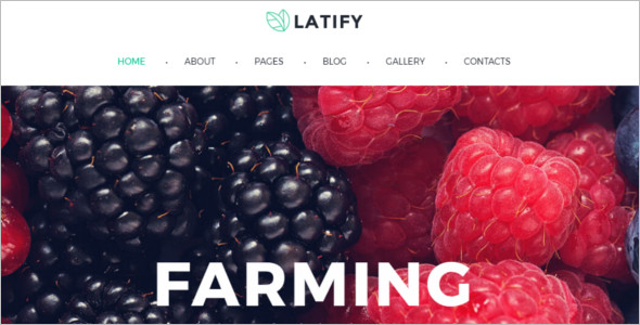 Farm Bootstrap Blog Template