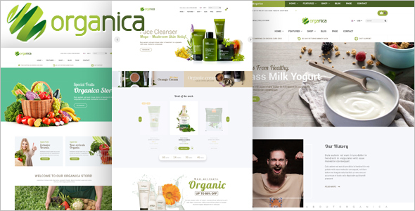 Organic Food Restaurant Magento Theme