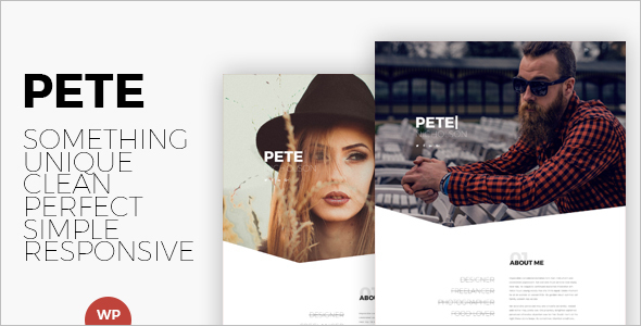 Portfolio Artist WordPress Template