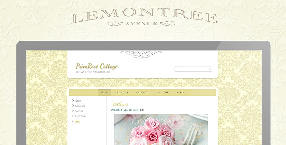 Premium Vintage Website Theme