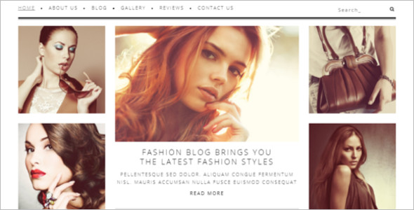 Professional Fashion Blog Theme