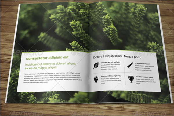 Attractive HD Brochure Template