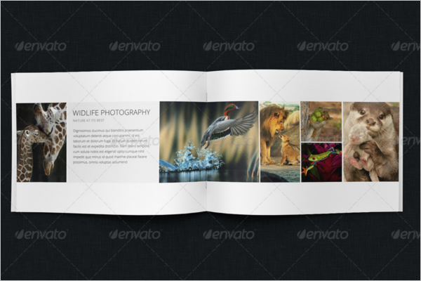 Bifold HD Brochure Template