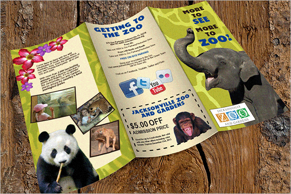 Free Zoo Brochure Template