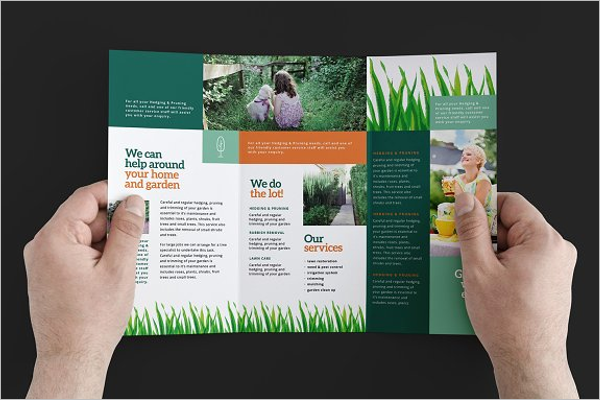 Green Brochure Layout
