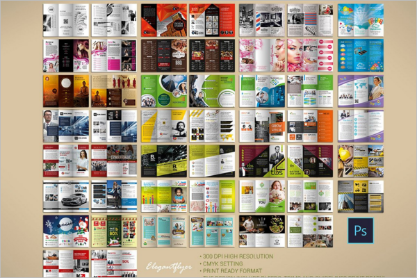 Multipurpose Brochure Bundle