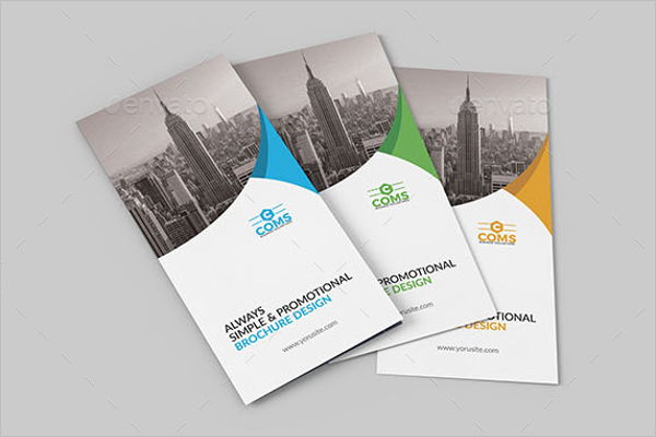 Premium Business Brochure Design