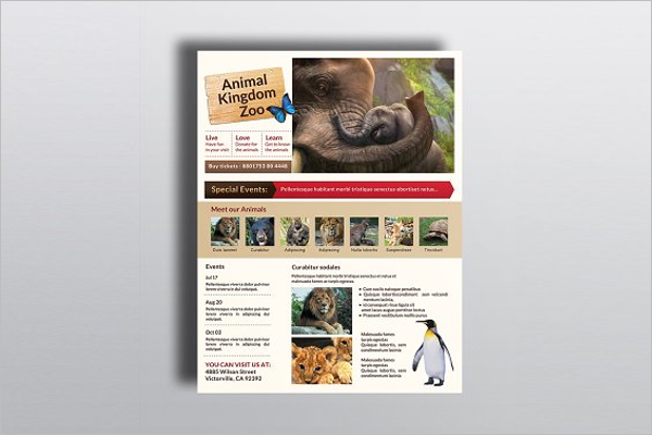 Premium Zoo Brochure Design