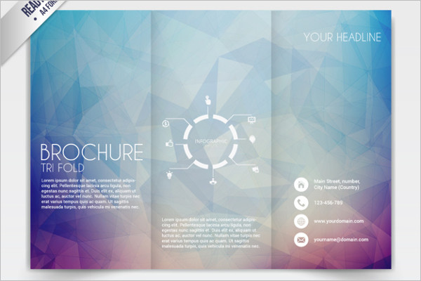 Sample Tri-Fold Brochure